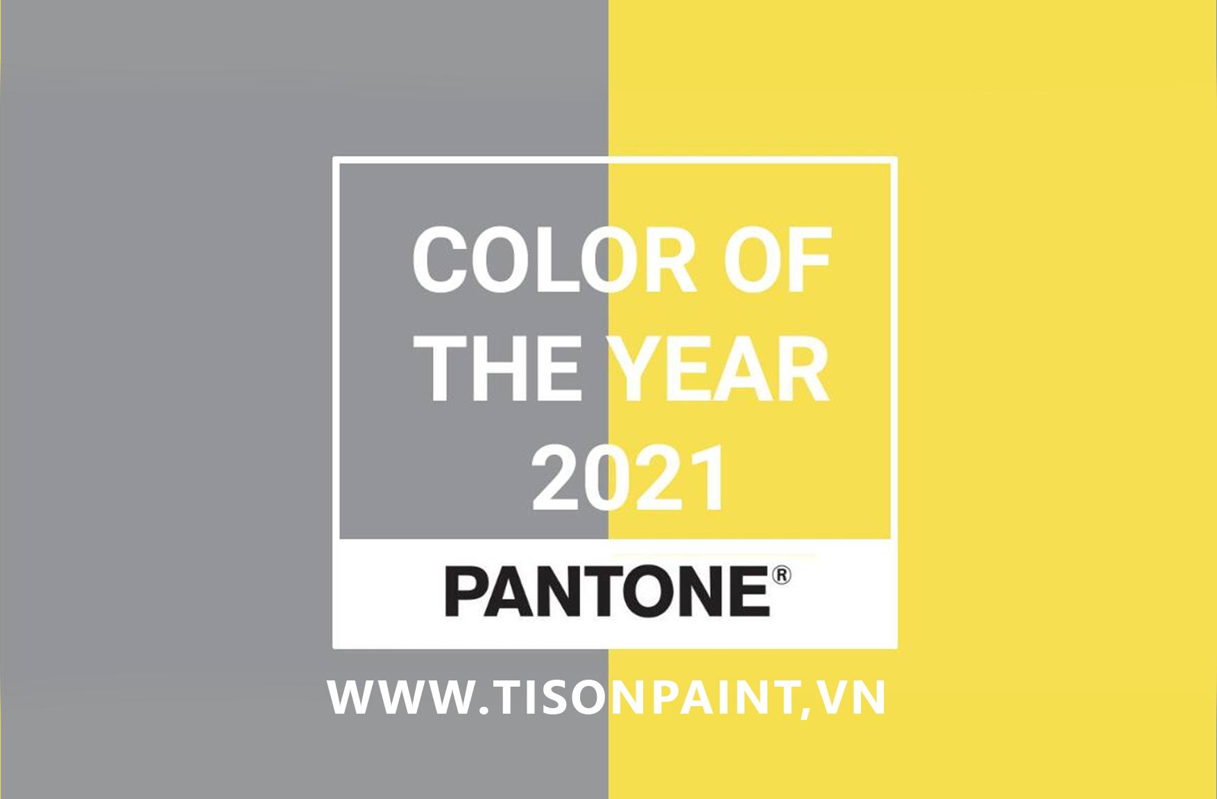 Màu của năm 2021 đã chính thức công bố bởi Pantone